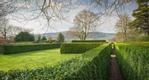 Tyddyn Llan - garden