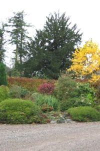Tyddyn Llan gardens